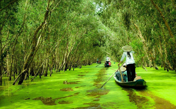 Explore Mekong Delta in flooding season