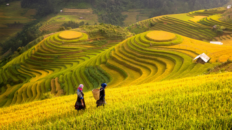 Things to Do in Sapa - Top Attractions