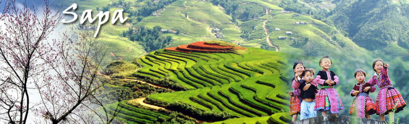 Best places to stay in Sapa