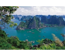 Paloma Cruise Halong bay Vietnam 3 Days 2 Nights