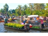 Mekong Delta Tour 1 Day (Cai Be - Vinh Long) from Saigon