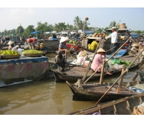 One Day Mekong Delta Tour (Cai Be - Vinh Long)
