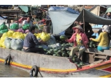 Le Cochinchine Cruise Mekong River Tour 2 Days From Cai Be | Viet Fun Travel