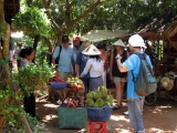Saigon - Dalat - Nha Trang Diving - Mekong Delta Tour 10 Days 9 Nights | Viet Fun Travel