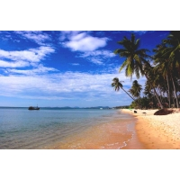 VF17 - Mekong Delta - Phu Quoc  Tour 5 Days 4 Nights from Saigon