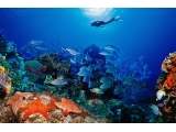Saigon – Phu Quoc Tour 3 Days 2 Nights With Snorkeling | Viet Fun Travel
