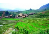 Sapa Medium Trekking Tour 3 Days From Saigon | Three Days Tour  Sapa Medium Trek | Viet Fun Travel
