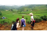 Sapa Hard Trek Tour 4 Days 3 Nights From Danang | Danang to Sapa Tour | Viet Fun Travel