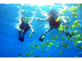South & East of Phu Quoc Tour With Snorkeling 3-Day 2-Night | Viet Fun Travel