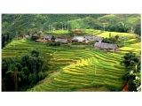 Fansipan Trekking Tour 4 Days 3 Nights - Sapa Fansipan Trek From Hue | Viet Fun Travel