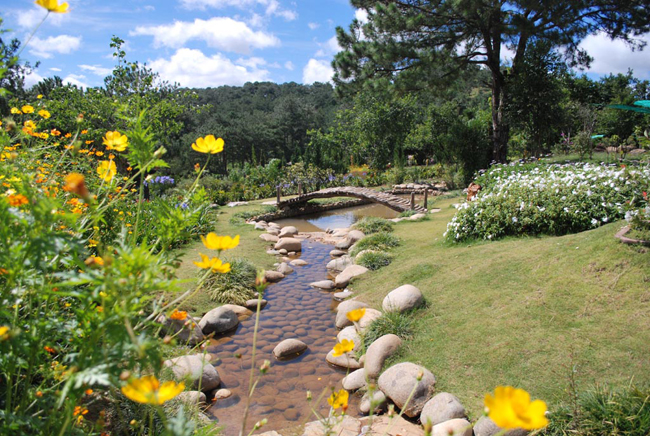 Golden Valley Dalat