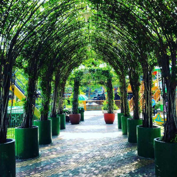 le-thi-rieng-park-viet-fun-travel