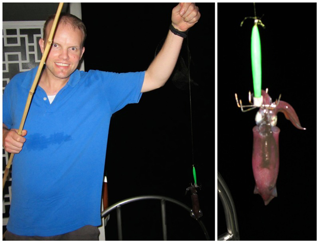 Go squid fishing at night halong