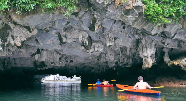 halong bay luon cave