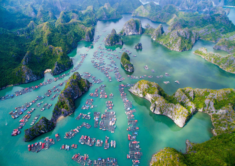 ​Budget Travel To Halong Bay Within 2 Days