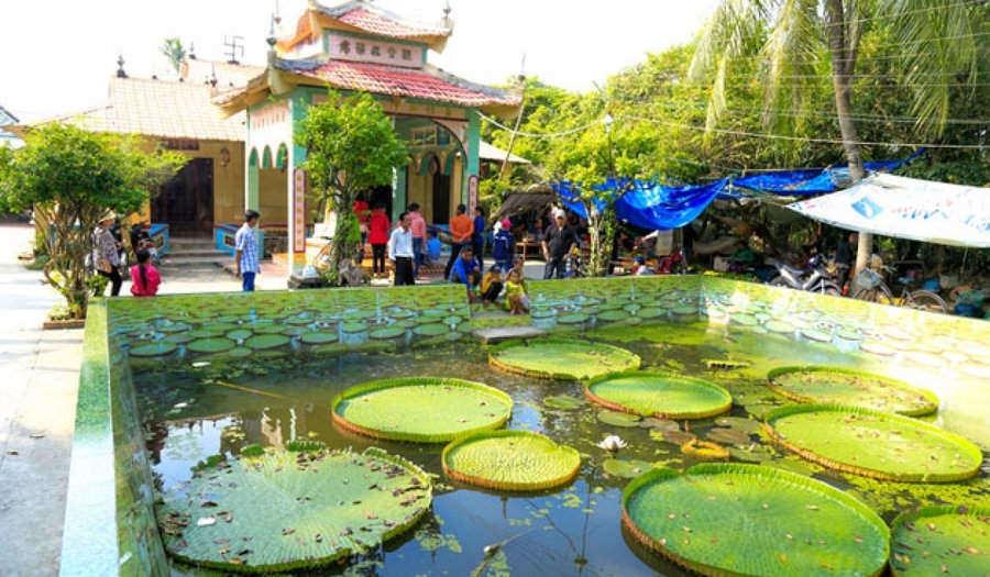 Dong-Thap/phuoc_kien_pagoda_dong_thap