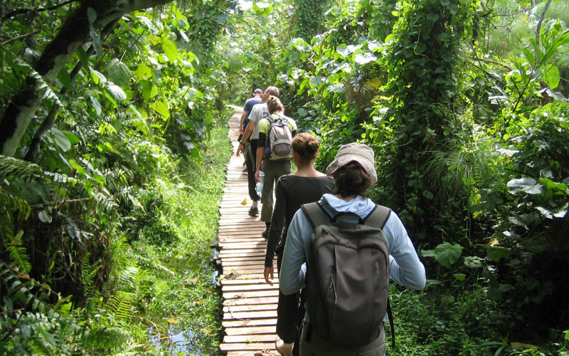 Phu Quoc national park By trekking