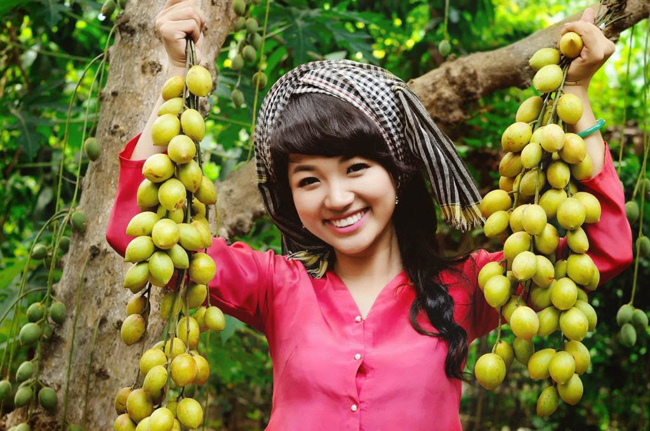 fruit gardens Vinh Long