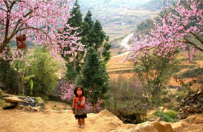 spring-in-Sapa.jpg