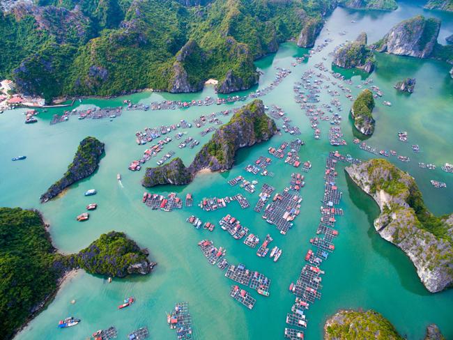 floating villages around Cat Ba islands